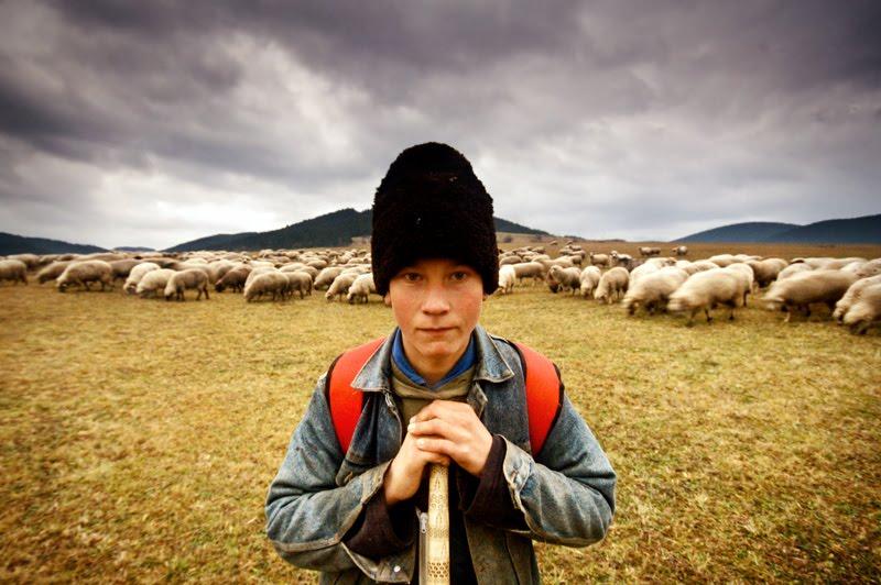 A bölcs pásztörfiú