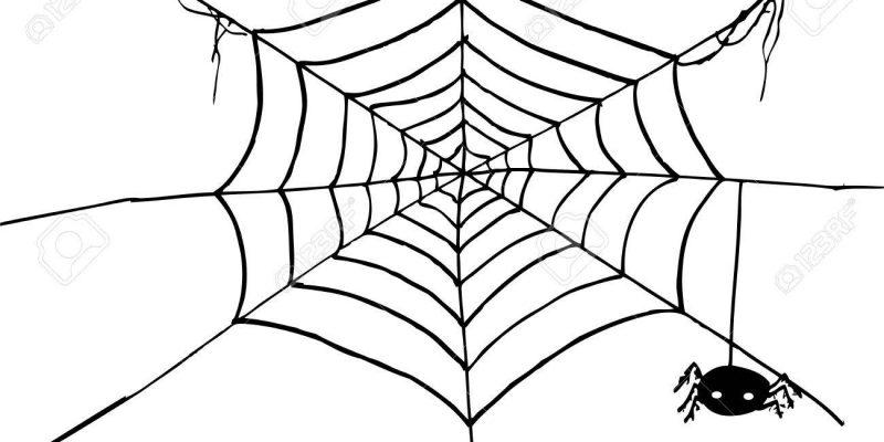 A pék pókja