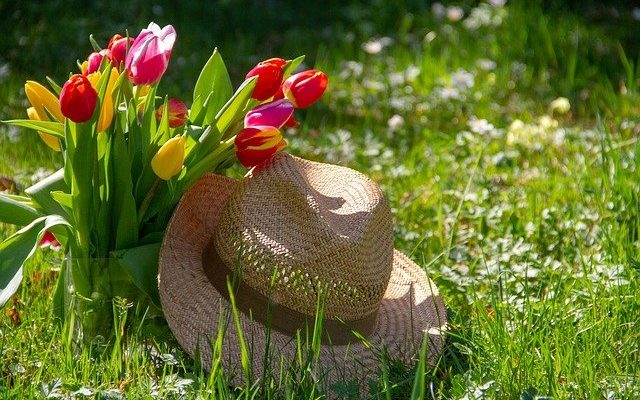 A virágfejű ember