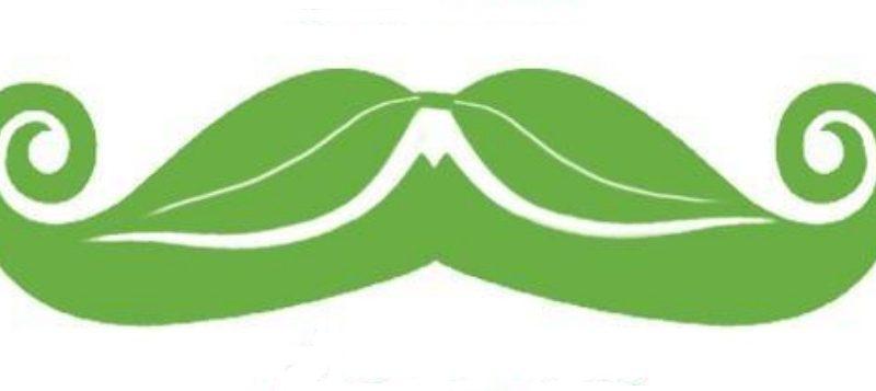 Zöldbajszú Marci királysága